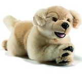 Peluche chien Golden retriever,peluche anima